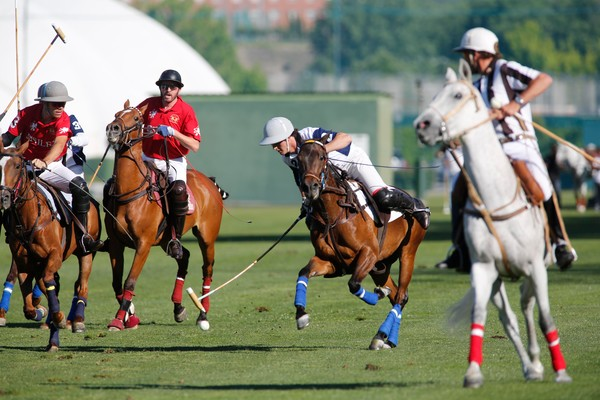POLO MADRID